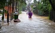 Quảng Ngãi mưa lớn, sạt lở cô lập nhiều xã vùng cao
