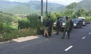 Lâm Đồng: Rúng động nghi án giết người chở xác xuống Bình Thuận phi tang