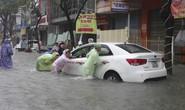 Ngập nước, rác thải làm nóng nghị trường Đà Nẵng