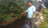 """Lãnh đạo huyện Phú Quốc lên tiếng việc dân """"tố"""" nhà máy rác xả nước thải ra biển"""