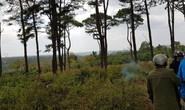 Đi thăm rẫy, tá hỏa phát hiện thi thể trong rừng thông