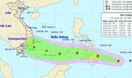 TP HCM lên phương án chống bão Sanba