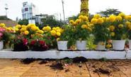 Xông vào công viên, trộm hoa giữa ban ngày