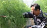 Nhà nông thời nông nghiệp công nghệ cao