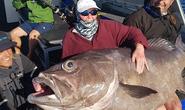 Cụ bà 68 tuổi câu được cá quái vật gần 130 kg