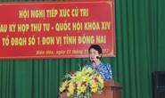 Bà Phan Thị Mỹ Thanh bị đề nghị khai trừ Đảng
