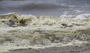 Hơn 3 km biển Đà Nẵng đổi màu sẫm và bốc mùi hôi