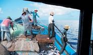 Kịch liệt phản đối Trung Quốc đơn phương cấm đánh cá ở biển Đông