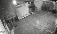 Video: Bé gái 9 tuổi bị bố mẹ đánh, kéo lê trên đường