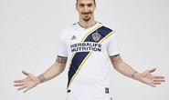 Ibrahimovic đến LA Galaxy vì M.U bị loại ở Champions League