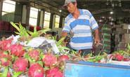 Trung Quốc siết nhập khẩu trái cây từ Việt Nam
