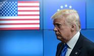 Sau nhôm - thép, ông Trump sờ gáy ô tô EU