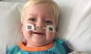Chết vì ung thư, bé 2 tuổi bất ngờ sống lại, hết bệnh