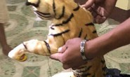 2 con hổ cưỡi xe khách từ TP HCM ra Hà Nội