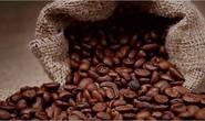 8 cách nhận biết cà phê giả, kém chất lượng bằng mắt thường