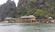Phá banh đảo ở Cát Bà