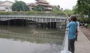 Kênh Nhiêu Lộc - Thị Nghè lại thành dòng kênh chết