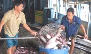 Mỹ giảm thuế chống bán phá giá cá tra