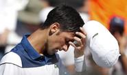 Djokovic sa thải Stepanek chỉ một tuần sau khi chia tay HLV Agassi