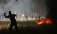 Bạo lực tiếp diễn ở Gaza, 7 người Palestine thiệt mạng
