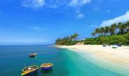Bỏ túi bí quyết để có chuyến đi đảo Lý Sơn hoàn hảo