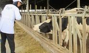 Gỡ khó cho doanh nghiệp nông nghiệp công nghệ cao