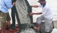 Thêm mối nguy đe dọa hạ nguồn Mê Kông