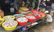 """Bạc Liêu: Bí thư phường bị tố mua hải sản của dân rồi """"quên""""… trả tiền"""