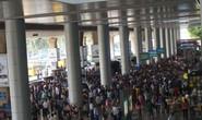 Chấn chỉnh bến cóc khủng khu vực sân bay Tân Sơn Nhất
