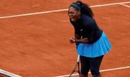 Chờ supermom Serena Williams xung trận