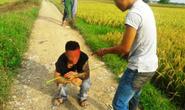 """Côn đồ xăm trổ """"bảo kê"""" máy gặt lúa: Muốn gặt phải nộp 5 triệu đồng"""