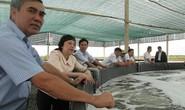 Đưa thủy sản đạt chuẩn xuất khẩu tiêu thụ tại TP HCM