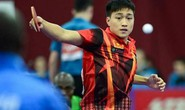 Tuyển nam bóng bàn Việt Nam tăng 5 bậc thế giới