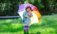 Nước mưa cũng làm trẻ dị ứng?