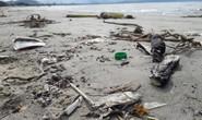 Đà Nẵng: Hơn 5 km bờ biển Nguyễn Tất Thành bị rác thải bủa vây