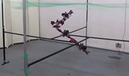 Dragon, robot bay lượn như rồng