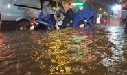 TP HCM: Rút quyền của Trung tâm Chống ngập
