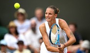 Pliskova bị loại, tứ kết Wimbledon sạch bóng top 10
