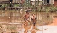 THẢM HOẠ VỠ ĐẬP THUỶ ĐIỆN: Động vật chết khắp nơi, trẻ em lội bùn nhận cứu trợ
