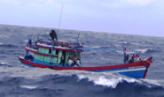 Tàu cá hỏng máy giữa biển, 9 thuyền viên đang lâm nguy