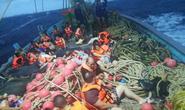 Thái Lan: 3 vụ lật tàu cùng ngày, 40 người thiệt mạng