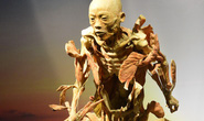 Ngừng triển lãm cơ thể người tại TP HCM vì ban tổ chức không trung thực