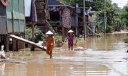 Dân nghèo miền Tây chạy đua với nước lũ