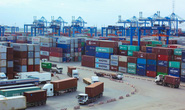 TP HCM chính thức vận hành hải quan tự động