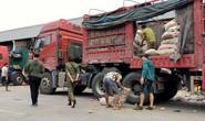 Lật mặt nông sản Trung Quốc nhái hàng Đà Lạt