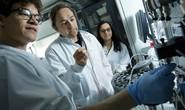 Phát hiện sớm nhiều bệnh ung thư nhờ… protein sốt rét