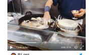 Đầu bếp Nhật trổ tài nhúng tay không vào chảo dầu sôi
