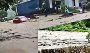 (Video) - Cận cảnh lũ cuốn gây sạt lở ở Sơn La