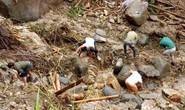 Sạt lở kinh hoàng ở Lai Châu: 12 người chết và mất tích, giao thông tê liệt hoàn toàn