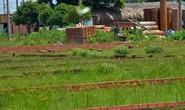 TP HCM chặn sốt đất: Công khai quy hoạch để chặn cò đất thổi giá